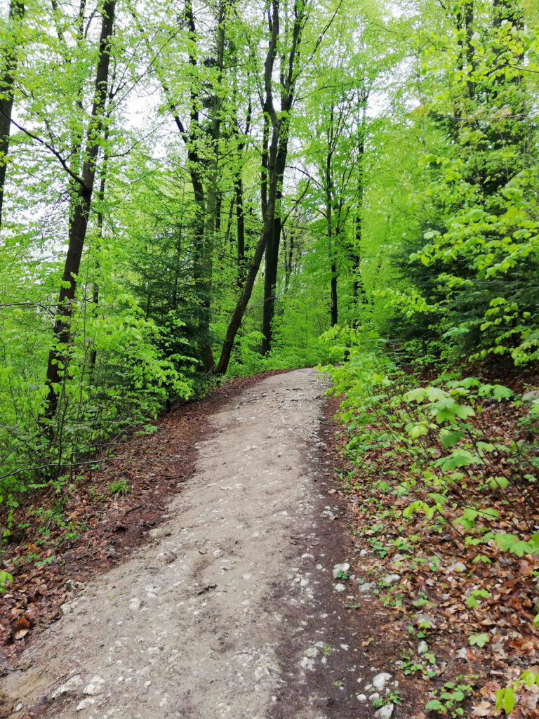 szlak ojcowski park narodowy