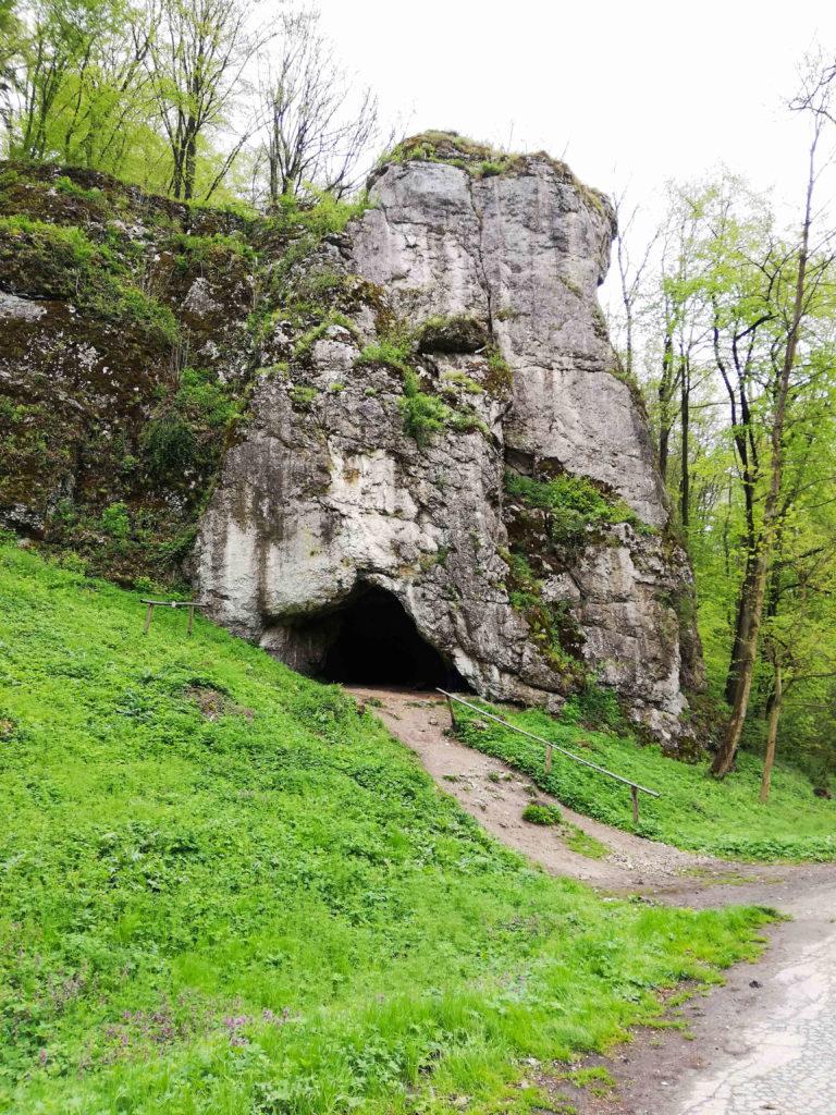 jaskinia krowia